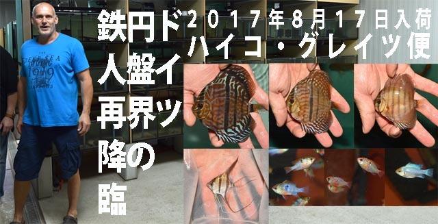 2017年8月17日入荷ハイコ便のコピー.jpg